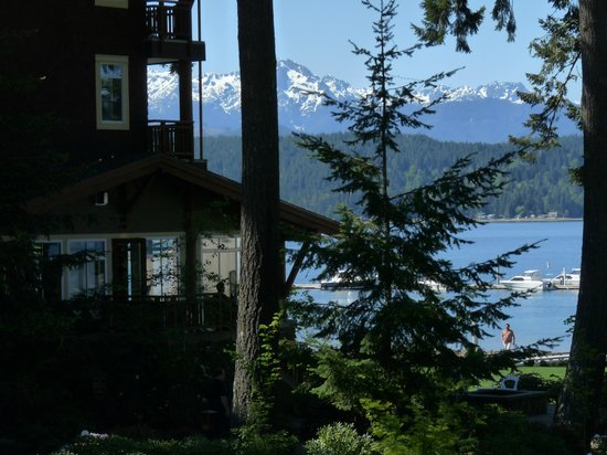 Alderbrook Resort & Spa: View from guest room; Olympic Mtns and hotel grounds