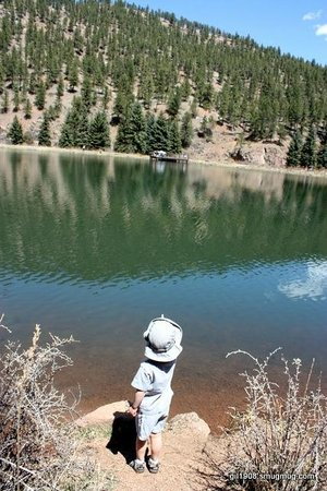 A view of the lake - Picture of Pine Valley Ranch Park ...