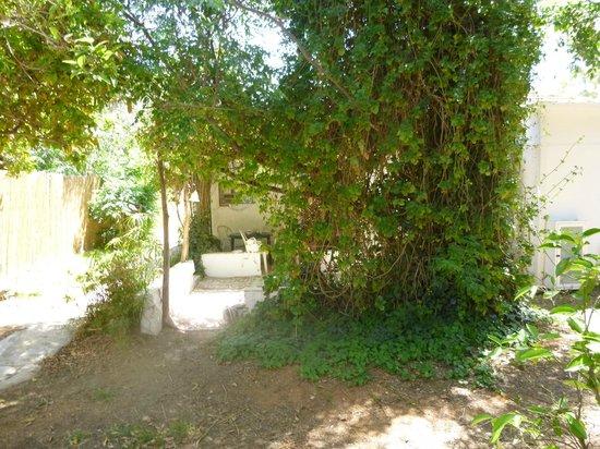 The Resort Hostel: Terrein