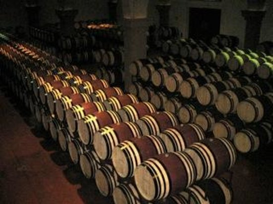 Guido's Tours - Wine Tours in Tuscany: Wine barrels in a Cantina we visited