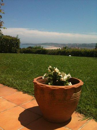 Bista Eder : Una tinaja con flores mirando las vistas