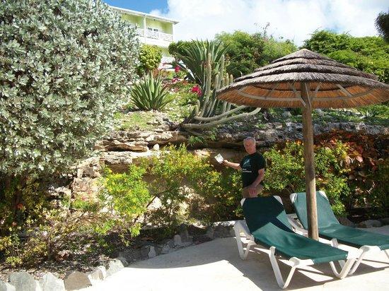 Pineapple Beach Club Antigua: One of several pools
