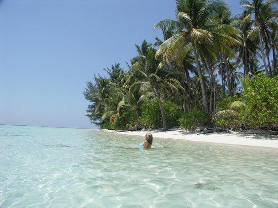 Kura Kura Resort : Lazy swim