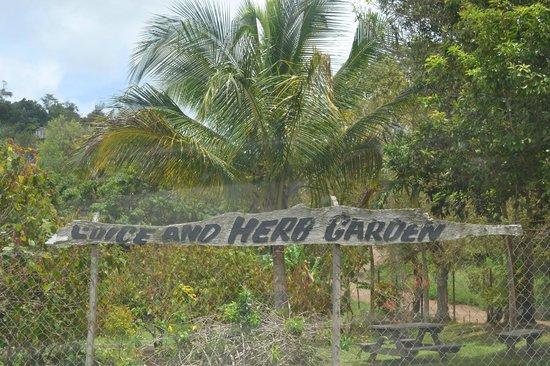 Laura's Herb & Spice Garden : Garden entrance
