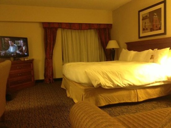Radisson Hotel Manchester: ROOM w/NICE TELEVISION AND COUCH