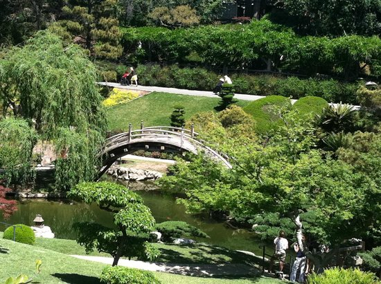 Japanese garden from tea house - Picture of The Huntington Library ...