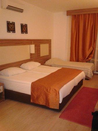 Serhan Hotel: Room