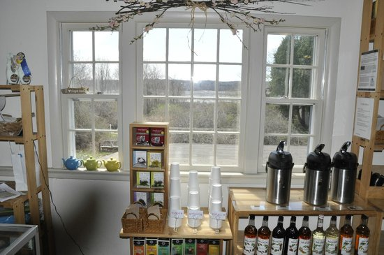 Momo's Food Emporium: View out rear window over the marsh