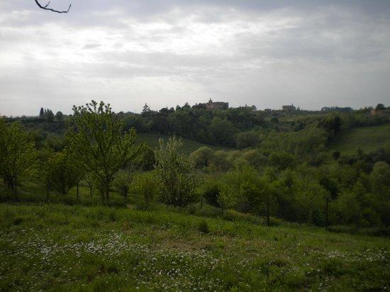 Agriturismo La Torretta : Veduta dall'agriturismo