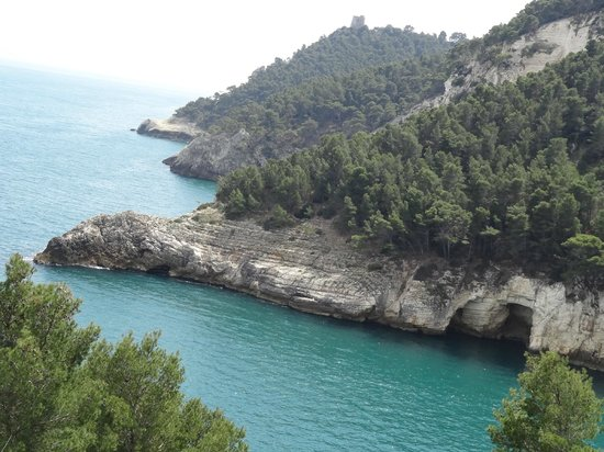 Albergo Villa Vittoria: natura incontaminata