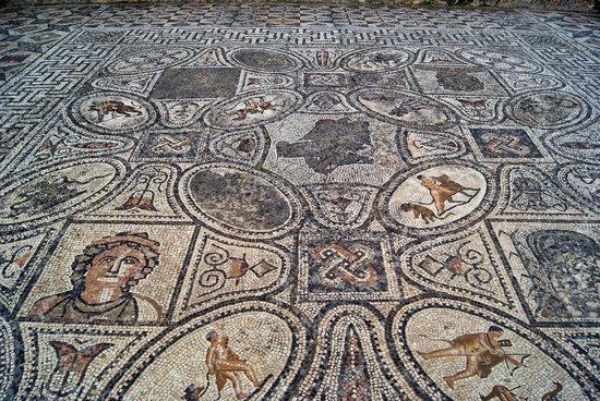 Volubilis: Mosaico