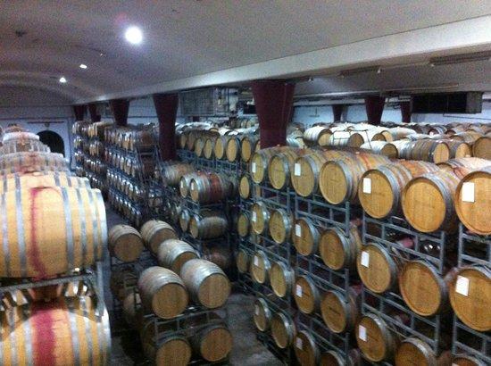 Boschendal Manor & Winery: Cellar