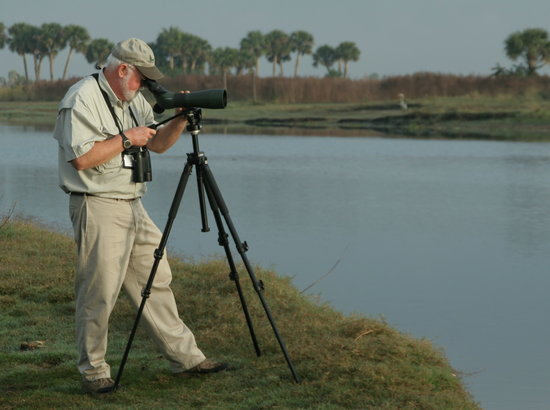 Great Florida Birding and Wildlife Trail: Birding and wildlife viewing support conservation in Florida and contribute $5 billion annually