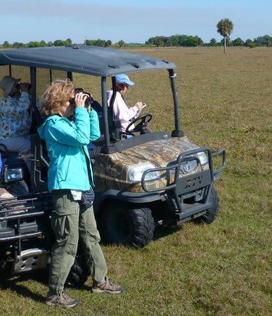 Great Florida Birding and Wildlife Trail : Big O Birding Festival 2013, La Belle, FL