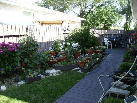 Country Fare Bed & Breakfast : Garden