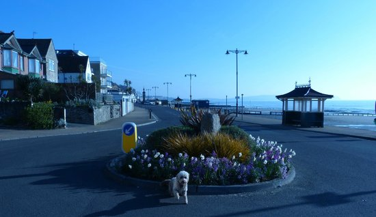 The Waterfront Inn: Just down the road
