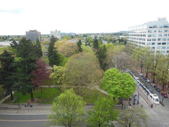 DoubleTree by Hilton Hotel Portland: View of Halladay Park