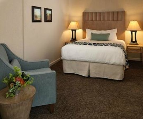 Cambria Landing Inn & Suites: Standard King
