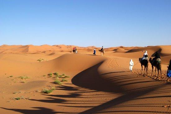 Belere Hotel Erfoud: Escursione sulle dune con partenza dalla cittadina di Erfud