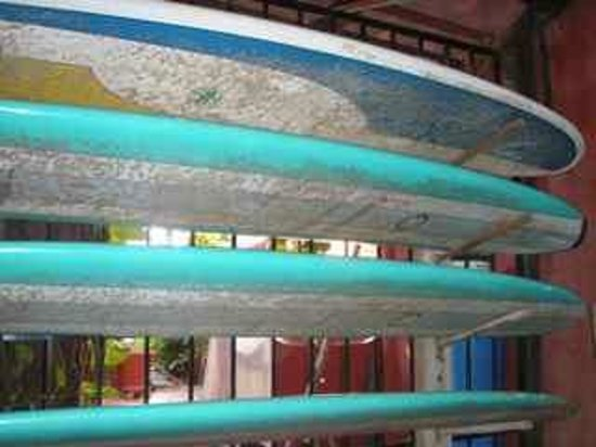 Casa Delfin Sonriente: Surf boards are available for our guests.