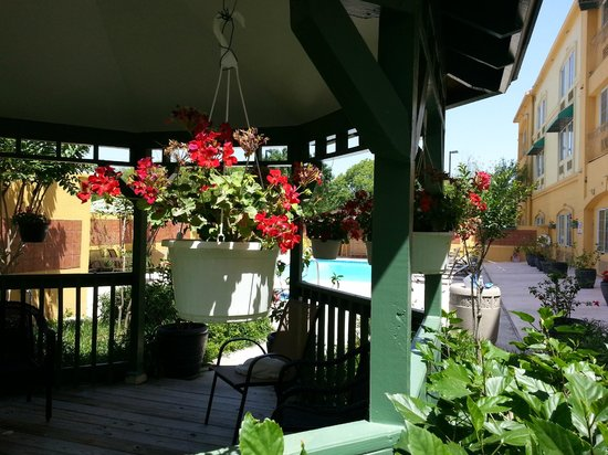 La Quinta Inn & Suites Brownsville North : Gazebo with Pool Beyond