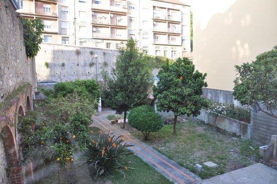 Pensao Residencial Jardim : View and backyard garden