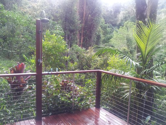 Crystal Creek Rainforest Retreat: My favourite place - the outdoor shower