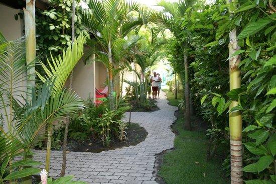 Pousada Tropicália: Jardim em frente dos apartamentos