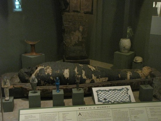 Kalamazoo, MI: Egyptian Mummy display