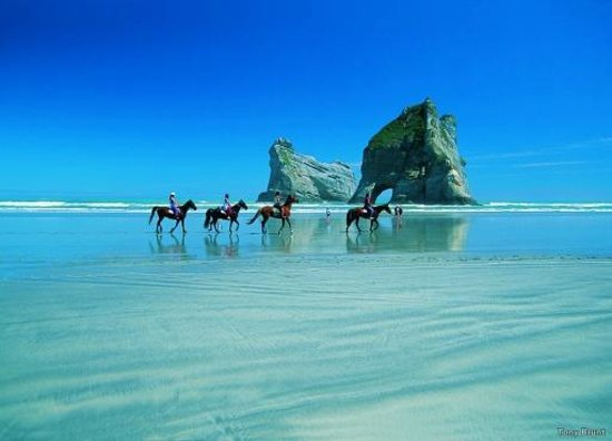 Pancake Lodge: Tasman treks can be arranged at the office