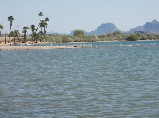 Looking out from a beach on Lake Havasu