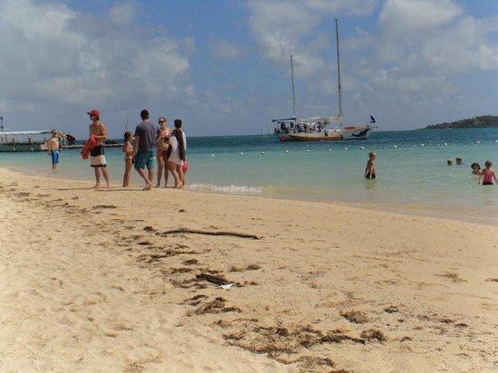 Plantation Island Resort: Just beautiful water and beach