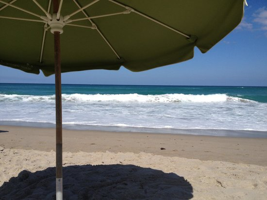 Marriott's Oceana Palms: Enough beach for all