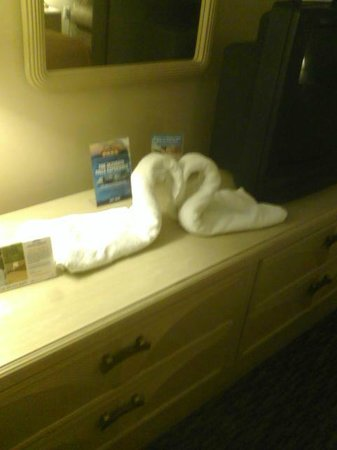 Howard Johnson Hotel by the Falls Niagara Falls : They left us Swan Towels