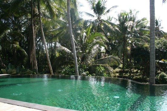 Komaneka at Rasa Sayang: The Pool