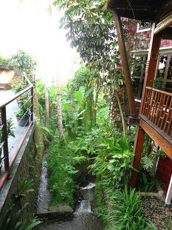 Junjungan Ubud Hotel and Spa: stream