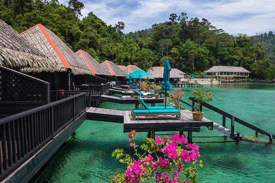 Gayana Eco Resort: Ocean Villas