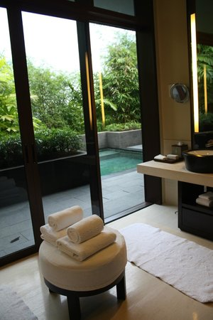 Capella Singapore: Villa 53 bathroom out to own pool