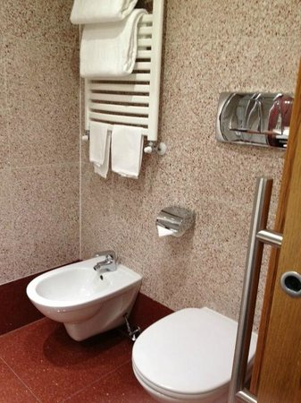 Hilton Garden Inn Rome Claridge: Bathroom