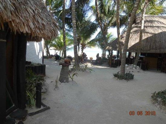 Beachfront Hotel La Palapa: La palapa