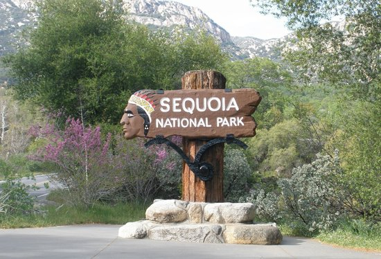 Kings Canyon: Park Sign