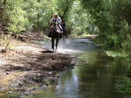 Circle Z Ranch : water