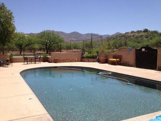 Circle Z Ranch: the pool