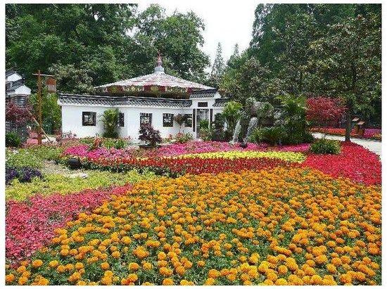 Jiefang Park Photo
