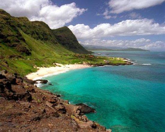 Uahu Tours Photo