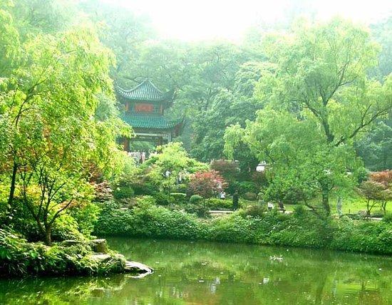 Hengyang China  City new picture : Things to Do Near Yan Cheng Hotel, Hengyang, China