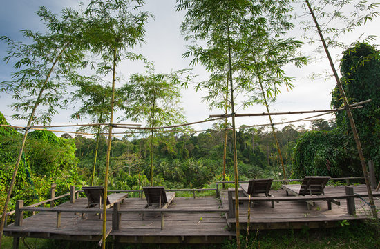 Paganakan Dii Tropical Retreat: Observation deck