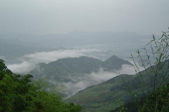 青檀自然保护区