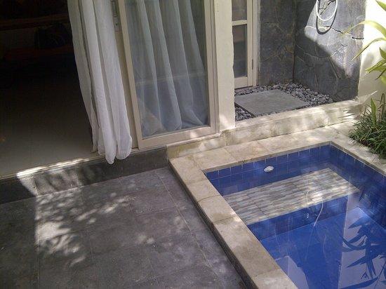 Best Western Kuta Villa: Plunge pool in the villa