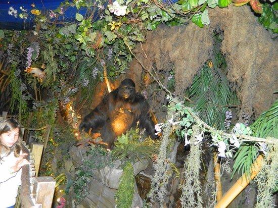 Il bancone a forma di serpente con sgabelli a zampe di for Rainforest londra